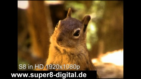 Super 8 Schmalfilm Normal8 Film digital in HD 1920 x 1080p überspielen auf DVD HDD USB.